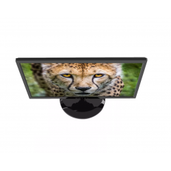 Monitor Led Sentey 20 Pulgadas Hd Ms1952 Hdmi Vga
